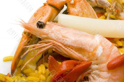 Spanish paella close-up