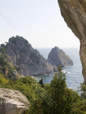 Mountain the Cat in Crimea