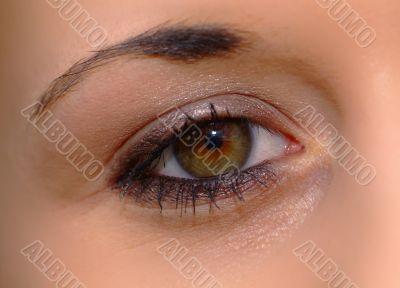 Auge offen | open eye