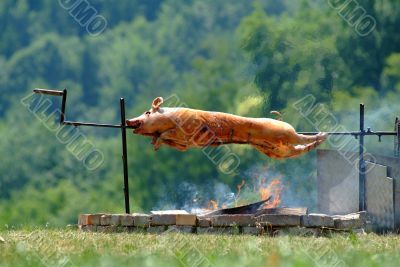 spanferkel | suckling pig