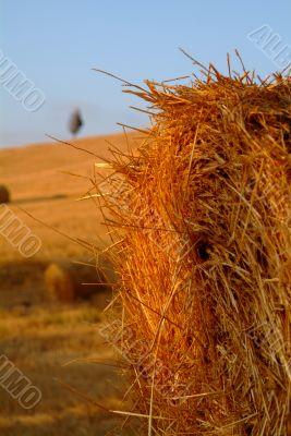 strohballen | straw bale