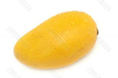 Mango (isolated on white)