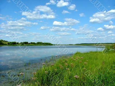landscape, year day on pond