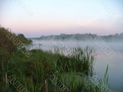 misty morning, by summer on lake