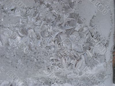 Hoarfrost on window glass in frosty weather