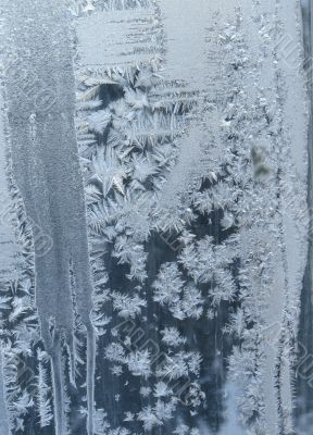 Hoarfrost on window glass