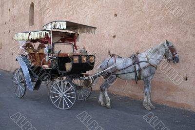 Meknes hackney carriage