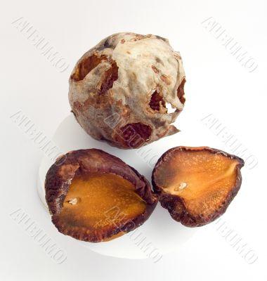 Dry seeds of an avocado