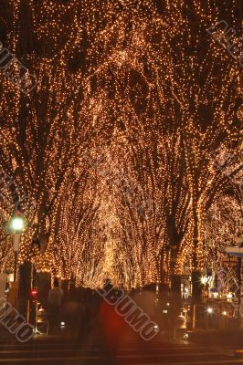 Sendai December illumination festival