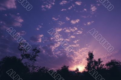 beautiful violet and lilac sundown with ray Sun