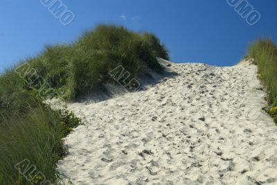Footpath nearing the top of the dune
