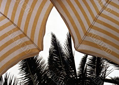 stripped white-yellow sun shade umbrellas