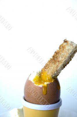 Soft boiled egg with buttered soldiers