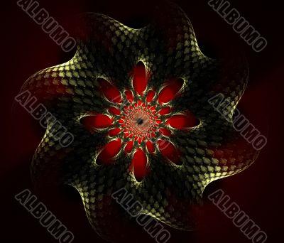 Mandala Mystery