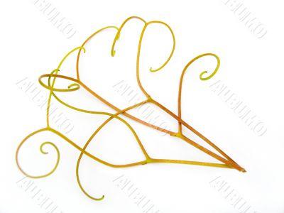tendrils a grapevine