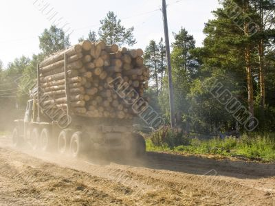 The timber carrying vessel