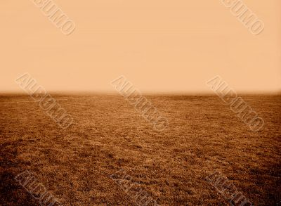 Field of Nothingness