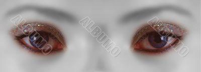 Auge | eye
