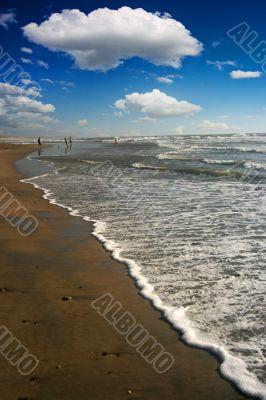 Beach Landscape