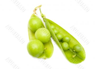Pod of  a green peas and fruits plums