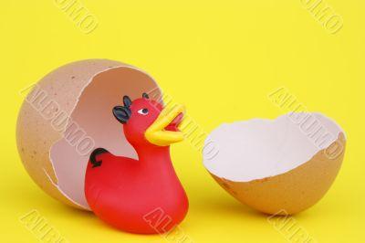 devil duck is born