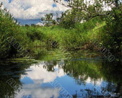 Sumer water landscape
