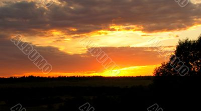 Summer sunset, sky with clouds