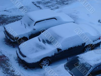 Snowed cars after night snowfall