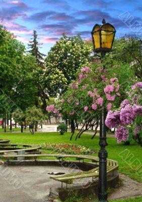 Park lantern under flowers