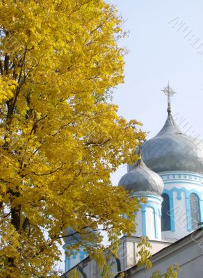 Cathedral`s Cupola behind Yellow Maple