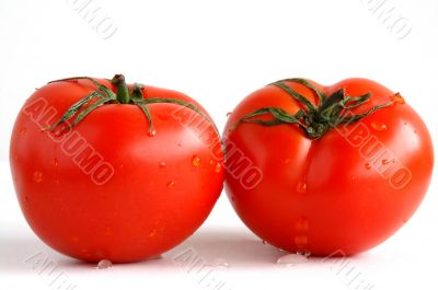 Two fresh and juicy tomatoes