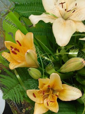 Sandy-white lilly bouquet