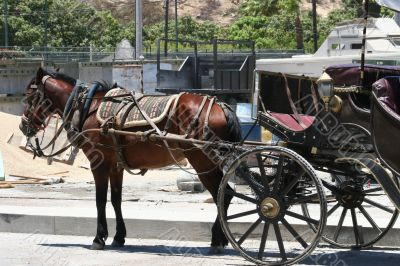 Cabo Carriage
