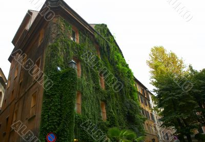 Building in Rome