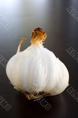 Garlic bulbs Roasted