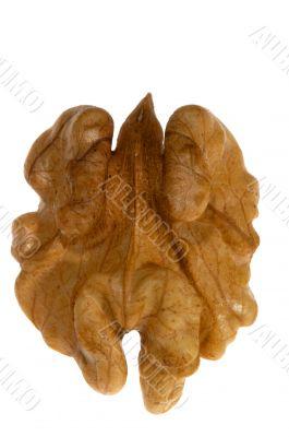 Kernel of walnut