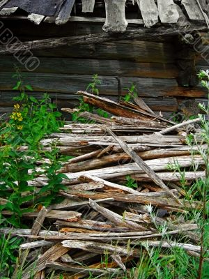 Background - old wood