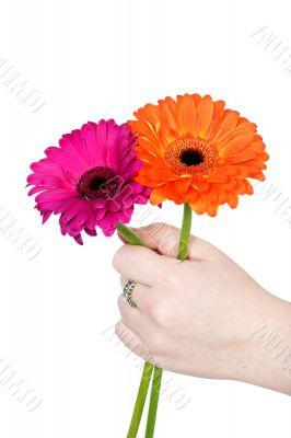 offer flowers