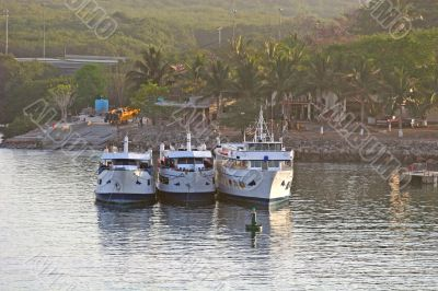 Three Party Boats