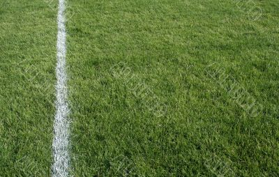 Green Grass and White Line