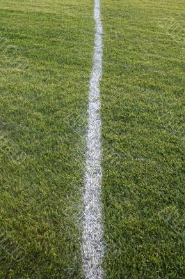 White Line, Green Field