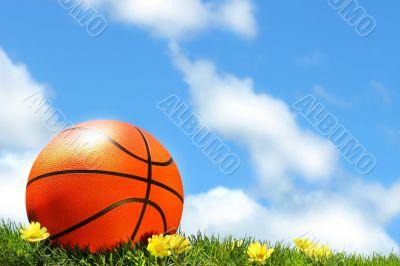 Basketball on the grass
