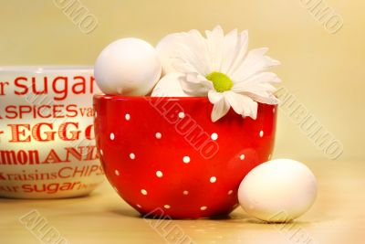 Eggs in red bowl