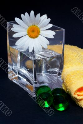 Daisy in the vase and bath pearls