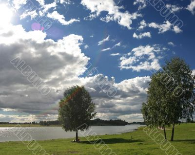 the summer landscape with lake and birches