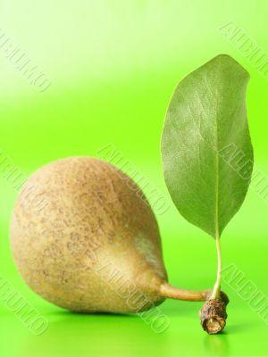 Pear vertical