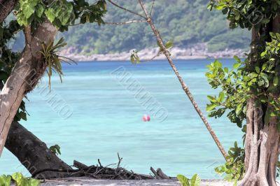 island tropical beach
