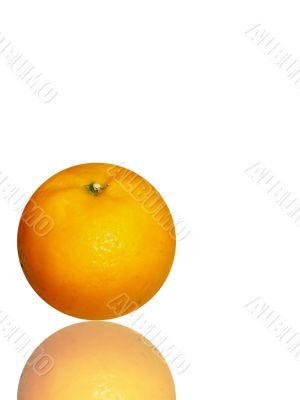 fresh and juicy orange on white