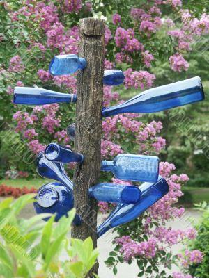 blue bottletree