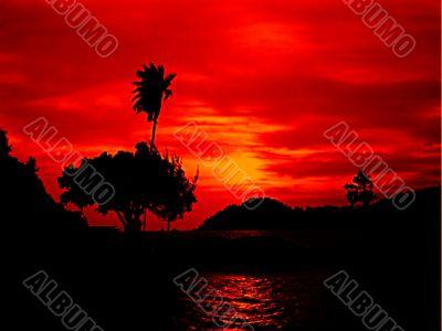 brilliant sunset silhouette